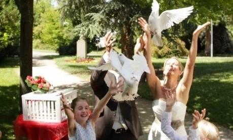 Hochzeitstauben-08