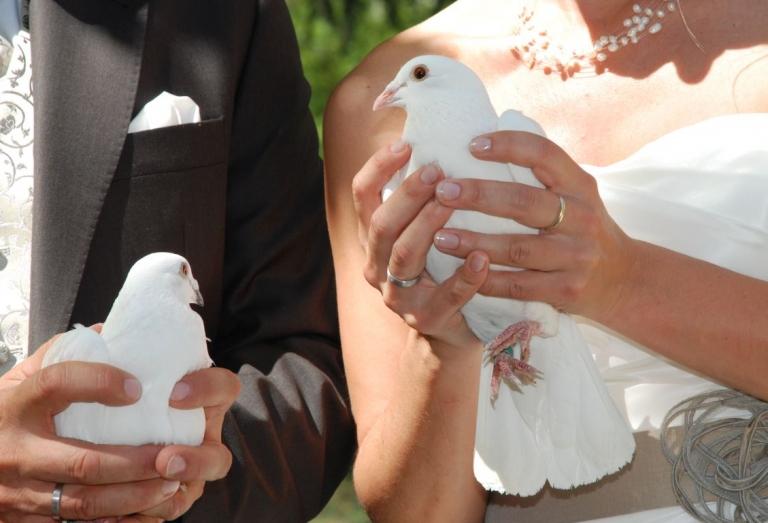 Hochzeit mit Taubenflug
